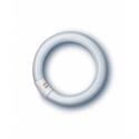 Изображение для категории Лампы кольцевые