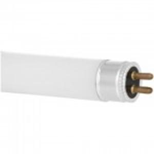 Изображение Лампа   8W люм желтая 4200К Т5