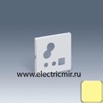 Изображение 05012-31 Накладка для звукового пульта управления 05212-39 слоновая кость Simon