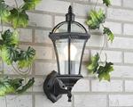 Изображение Светильник уличный настенный Capella черный