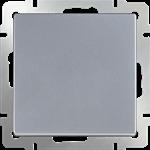 Изображение Выключатель одноклавишный проходной (серебряный)