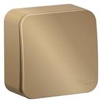 Изображение SE Blanca наруж Титан Выключатель 1-клавишный с самовозвратом, 10А, 250В, изолир. пластина