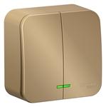 Изображение SE Blanca наруж Титан Выключатель 2-клавишный с подсветкой 10А,250B, изолир. пластина