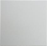 Изображение S.1/B.3/B.7 Клавиша 1-ная, белый матовый Berker
