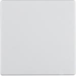 Изображение Q.1/Q.3 Клавиша 1-кан. для электронн. реле, выкл., димм. B.NET, белый бархат Berker