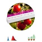 Изображение ЭРА Линейный светильник красно-синего спектра FITO-14W-Т5-N